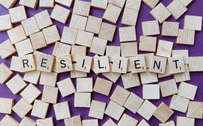 Does Resilience Reflect your Risk?